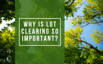 Why Is Lot Clearing So Important?