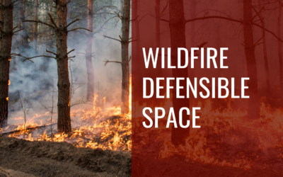 Defensible Space – Be Ready for Wildfire