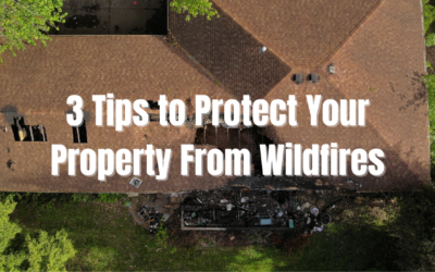 3 Tips to Protect Your Property From Wildfires