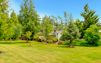Your Essential Spring Yard Cleanup Checklist