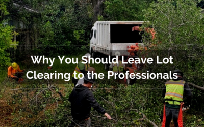 Why You Should Leave Lot Clearing to the Professionals